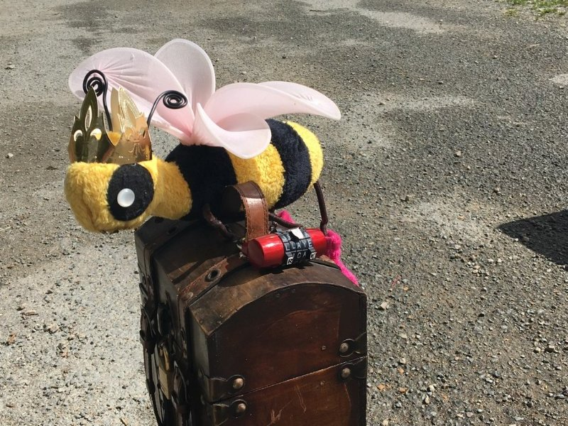 abeilles0013