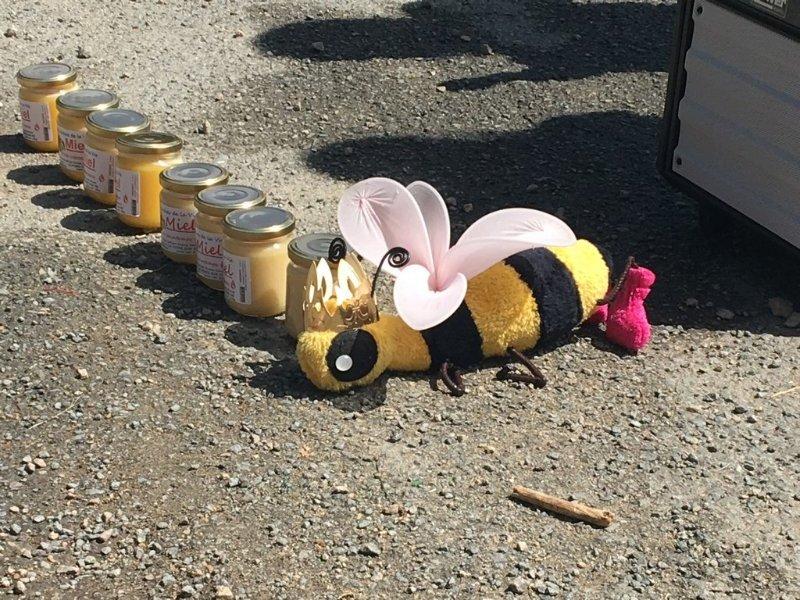 abeilles0019